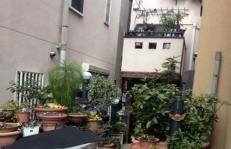 東京都目黒区戸建て