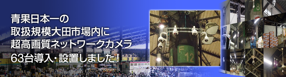 大田市場内に超高画質ネットワークカメラ63台導入・設置しました!